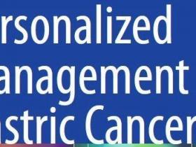胃癌个体化治疗专著(英文版)