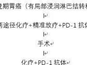 胃癌(病灶无法切除)的同步放化疗/PD-1抗体,为手术创造条件